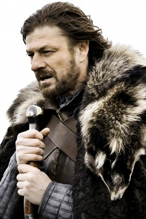 Ned Stark Game of Thrones - Novel Conclusions - literary blog - character tags